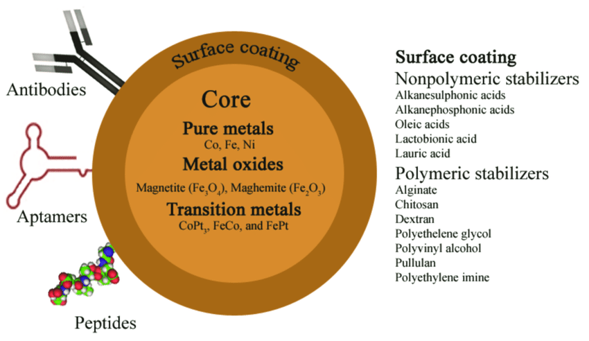 Composition-of-magnetic-beads